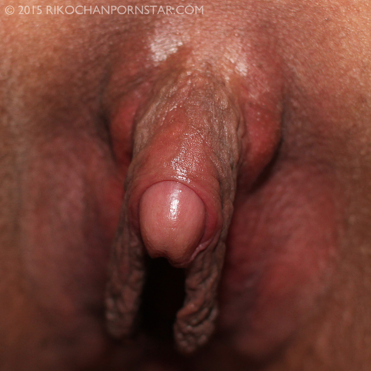 Large clit picture